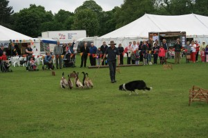 Nottinghamshire county show 14-15th May